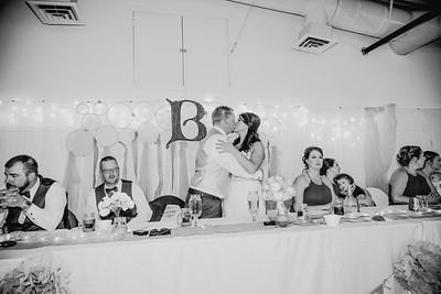 05478--©ADHPhotography2017--HeathBrownReneeFelber--Wedding