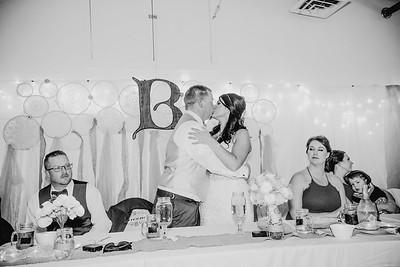 05482--©ADHPhotography2017--HeathBrownReneeFelber--Wedding