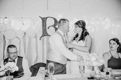 05488--©ADHPhotography2017--HeathBrownReneeFelber--Wedding
