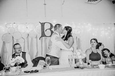 05484--©ADHPhotography2017--HeathBrownReneeFelber--Wedding