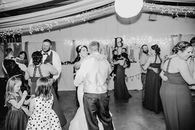 06514--©ADHPhotography2017--HeathBrownReneeFelber--Wedding