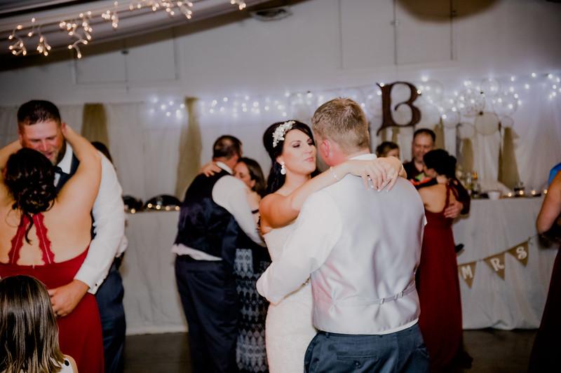 06517--©ADHPhotography2017--HeathBrownReneeFelber--Wedding