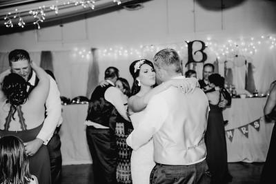 06518--©ADHPhotography2017--HeathBrownReneeFelber--Wedding
