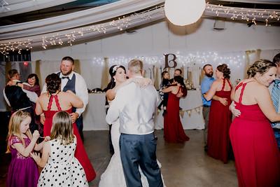 06513--©ADHPhotography2017--HeathBrownReneeFelber--Wedding