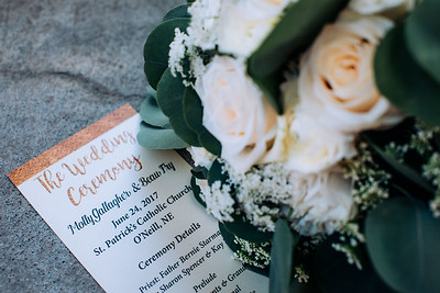 03157--©ADH Photography2017--BeauMollyFry--Wedding