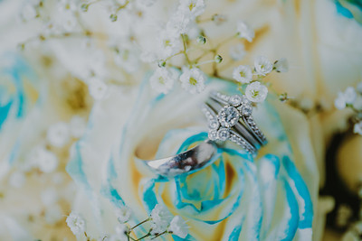 03445--©ADH Photography2017--HauxwellStephens--Wedding