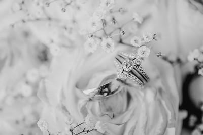 03446--©ADH Photography2017--HauxwellStephens--Wedding