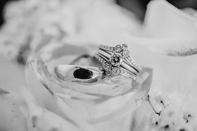 03462--©ADH Photography2017--HauxwellStephens--Wedding
