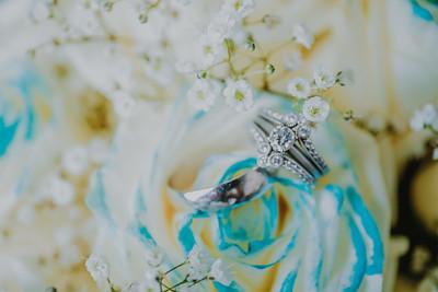 03447--©ADH Photography2017--HauxwellStephens--Wedding