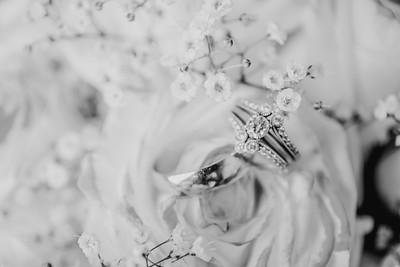 03448--©ADH Photography2017--HauxwellStephens--Wedding