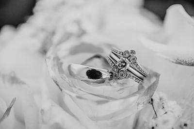 03460--©ADH Photography2017--HauxwellStephens--Wedding