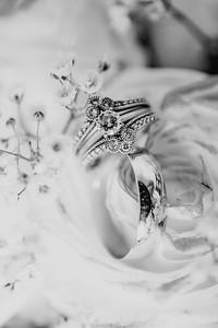 03456--©ADH Photography2017--HauxwellStephens--Wedding