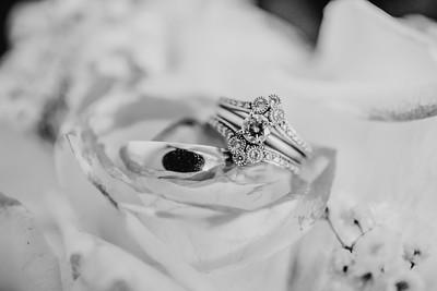 03464--©ADH Photography2017--HauxwellStephens--Wedding