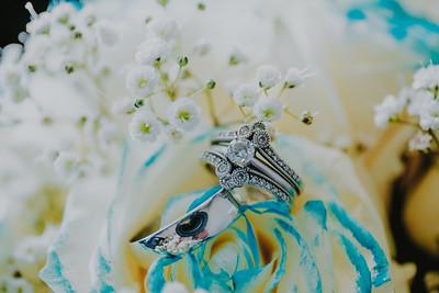 03443--©ADH Photography2017--HauxwellStephens--Wedding