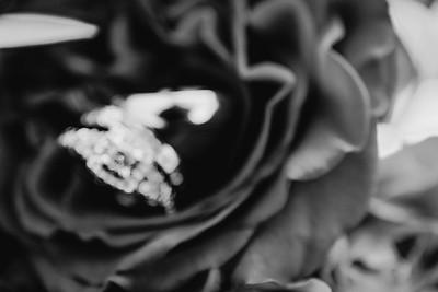05837--©ADHPhotography2017--HeflinWedding--Wedding