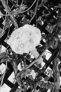 00114--©ADHPhotography2017--DerekHelmsAllisonRodriguez--Wedding