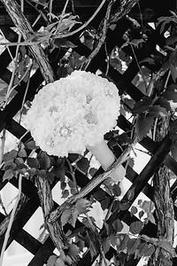 00112--©ADHPhotography2017--DerekHelmsAllisonRodriguez--Wedding