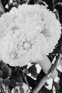 00122--©ADHPhotography2017--DerekHelmsAllisonRodriguez--Wedding