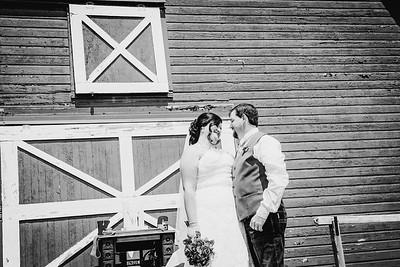01410--©ADHPhotography2017--CodyKristinaMessersmith--Wedding
