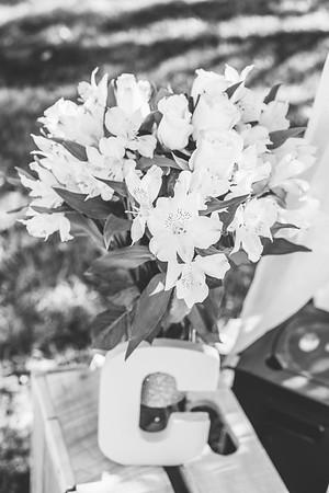 02394--©ADHPhotography2016--ZacCaylaRichardsWedding