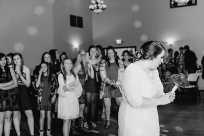 07920--©ADH Photography2017--Dale&AlexSchilke--Wedding