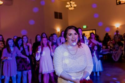 07927--©ADH Photography2017--Dale&AlexSchilke--Wedding
