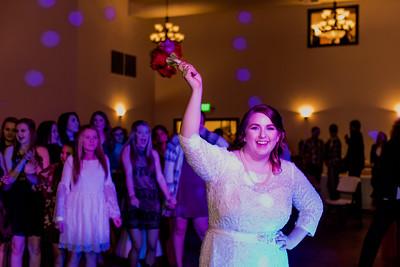 07911--©ADH Photography2017--Dale&AlexSchilke--Wedding