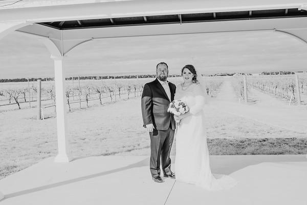 01134--©ADH Photography2017--Dale&AlexSchilke--Wedding