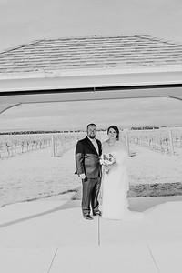 01142--©ADH Photography2017--Dale&AlexSchilke--Wedding
