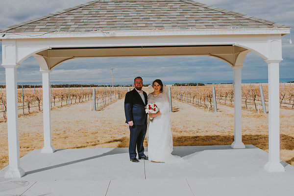 01153--©ADH Photography2017--Dale&AlexSchilke--Wedding
