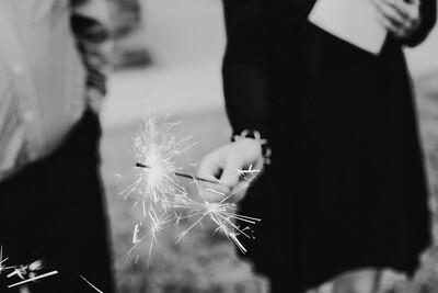 06082--©ADH Photography2017--Dale&AlexSchilke--Wedding
