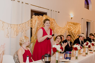 07035--©ADH Photography2017--Dale&AlexSchilke--Wedding