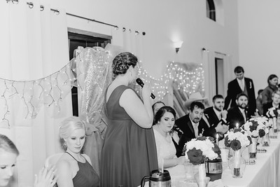 07034--©ADH Photography2017--Dale&AlexSchilke--Wedding
