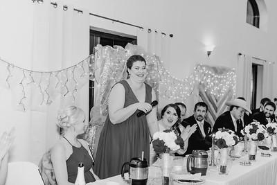07036--©ADH Photography2017--Dale&AlexSchilke--Wedding