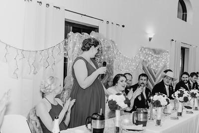 07040--©ADH Photography2017--Dale&AlexSchilke--Wedding