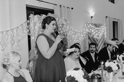 07050--©ADH Photography2017--Dale&AlexSchilke--Wedding