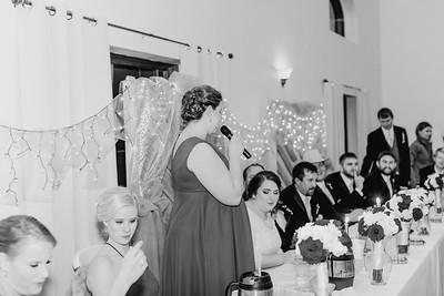 07032--©ADH Photography2017--Dale&AlexSchilke--Wedding