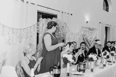 07042--©ADH Photography2017--Dale&AlexSchilke--Wedding