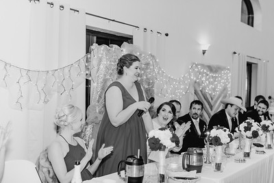 07038--©ADH Photography2017--Dale&AlexSchilke--Wedding