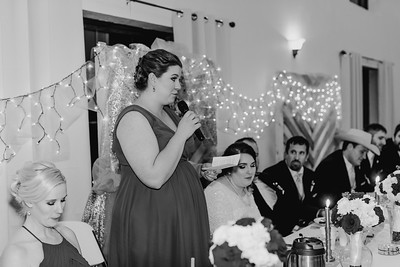 07052--©ADH Photography2017--Dale&AlexSchilke--Wedding