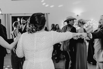 07750--©ADH Photography2017--Dale&AlexSchilke--Wedding