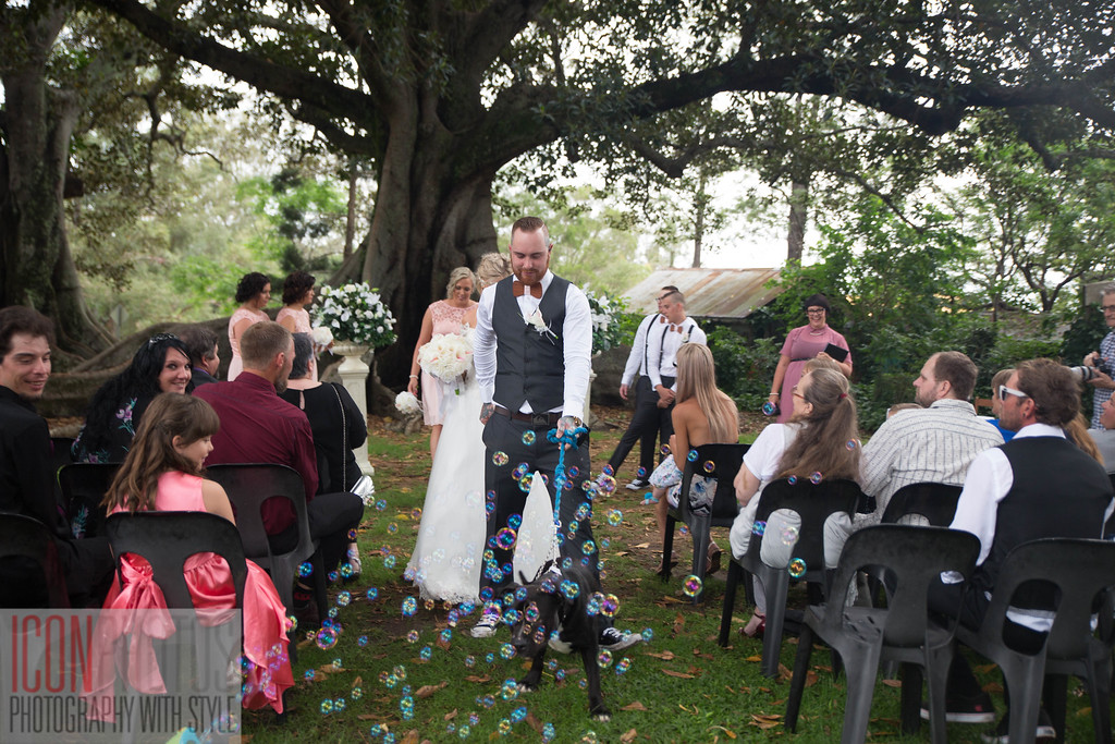 Mr & Mrs Shaw wedding-6227