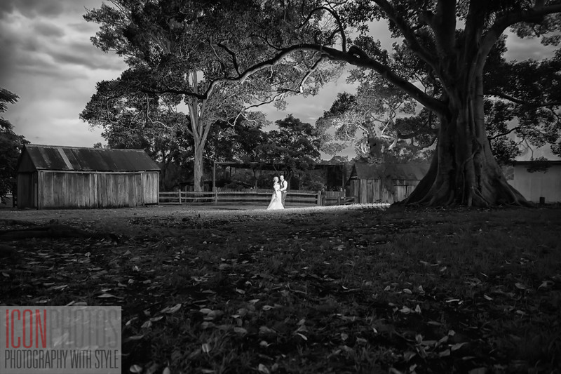 Mr & Mrs Shaw wedding-6385-Edit-Edit