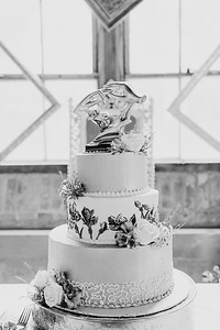 02672--©ADH Photography2017--ToddTeriShively--Wedding