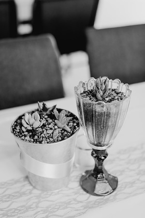 00004--©ADH Photography2017--ToddTeriShively--Wedding