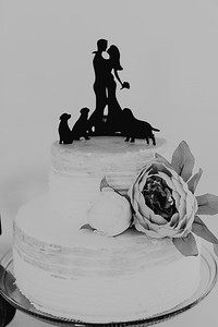 04972--©ADH Photography2017--FrankAylaSmith--Wedding