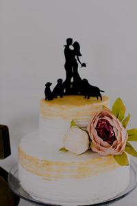 04977--©ADH Photography2017--FrankAylaSmith--Wedding