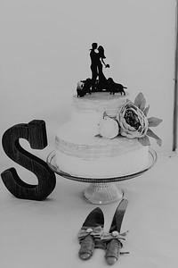 04968--©ADH Photography2017--FrankAylaSmith--Wedding