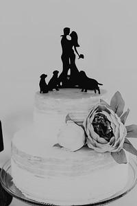 04974--©ADH Photography2017--FrankAylaSmith--Wedding