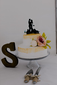 04965--©ADH Photography2017--FrankAylaSmith--Wedding
